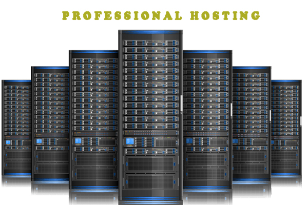 Professional Hosting