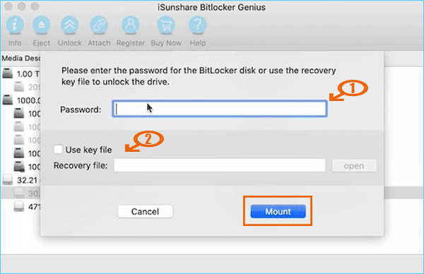Mount the drive with a password or recovery file