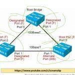 spanning tree protocol