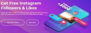 Instagram Followers & Likes