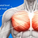 rib pain ICD 10